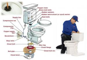 schéma toilette